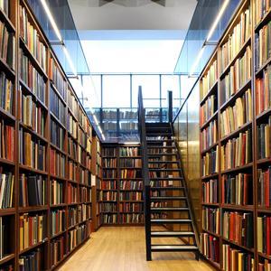 Библиотеки Людиново